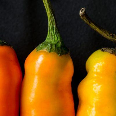 Tutti i tipi di peperoncino